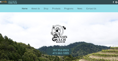 Devil's Gulch Ranch | We also sell livestock guardian dogs!